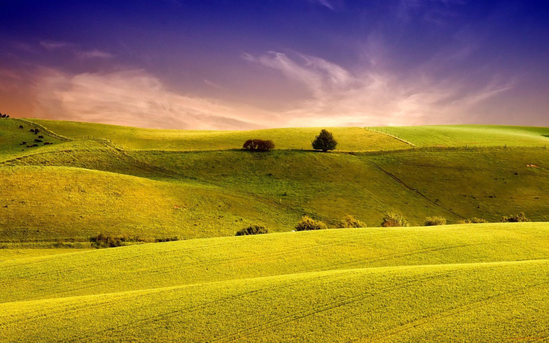 изучили поля и долины картинки скрепляем детали заодно
